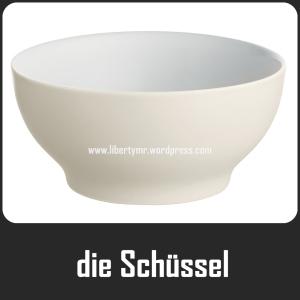 schüssel