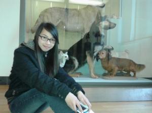 Marla dengan latar belakang anjing dalam berbagai jenis