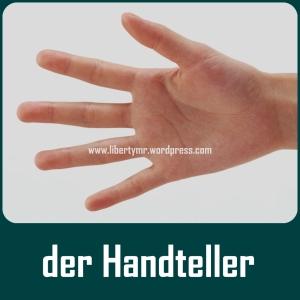 Handteller