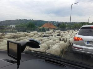 Liburan di Bayern